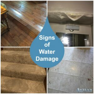Signs of Water Damage & When to Hire a Professional