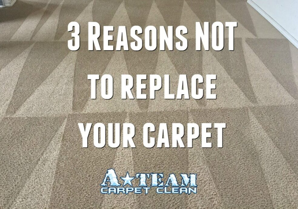 3-reasons-not-to-replace-carpet